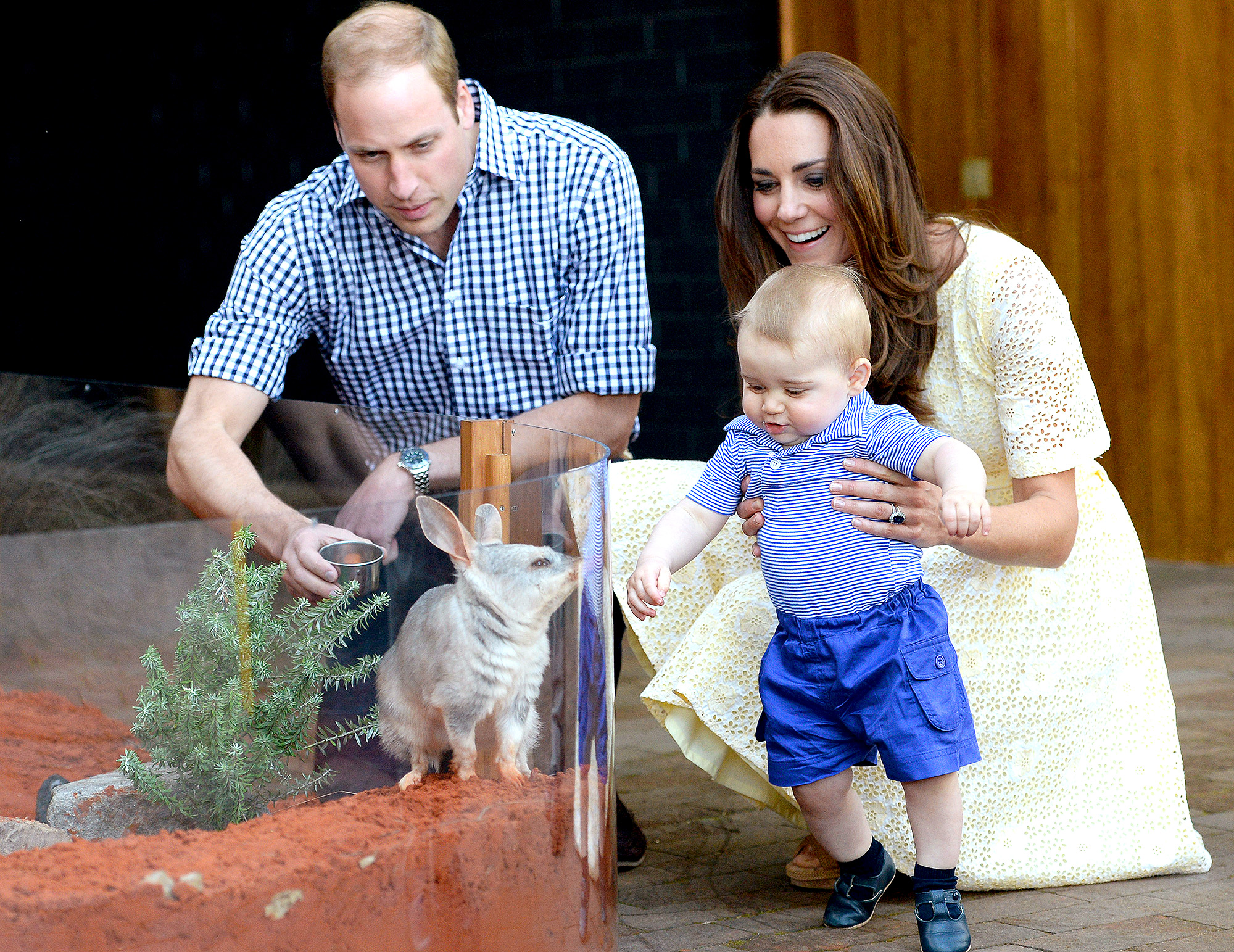 Prince William, Kate Middleton and Prince George at the Taronga Zoo in 2014
